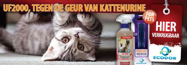 be60209d332529d3036535d7ea483307 Ziekte en aandoeningen van het urinair stelsel bij katten.
